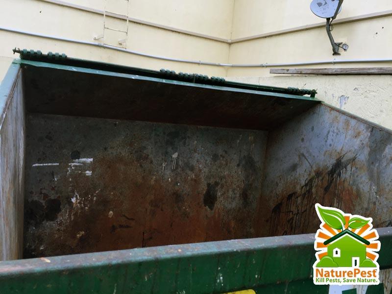 open trash dumpsters
