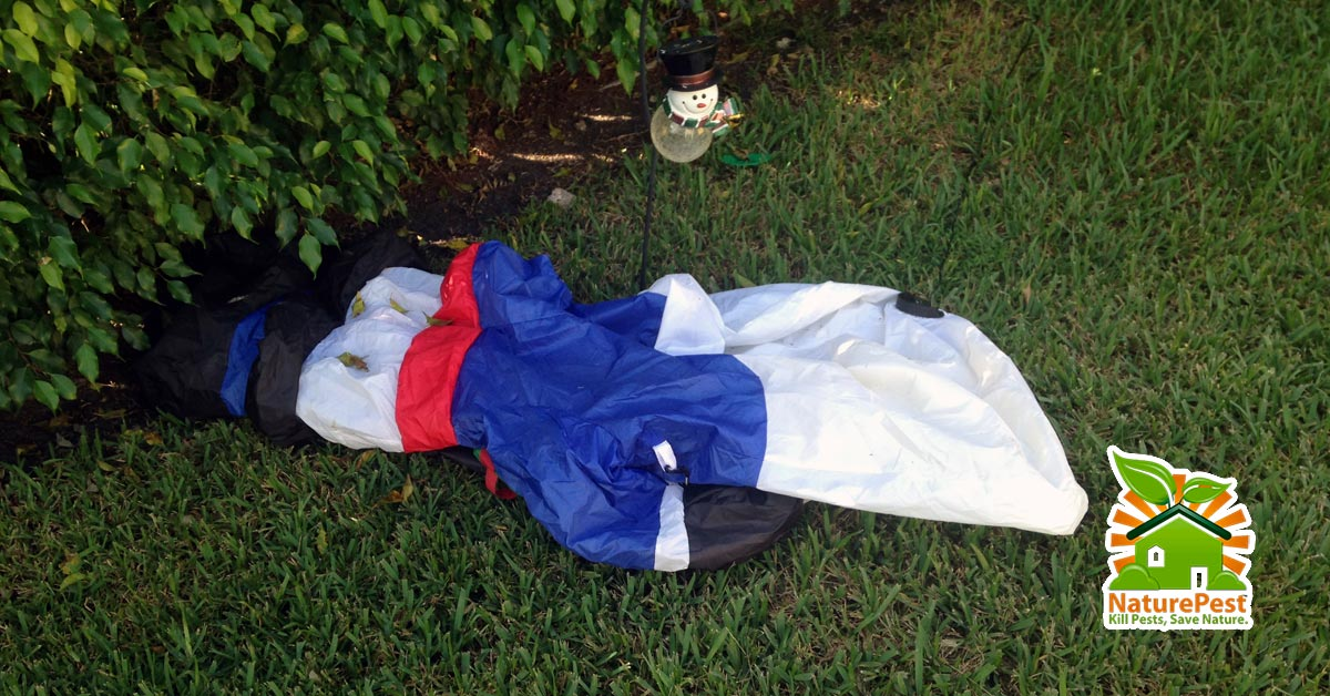 Christmas Lawn Ornaments Could Damage Your Lawn