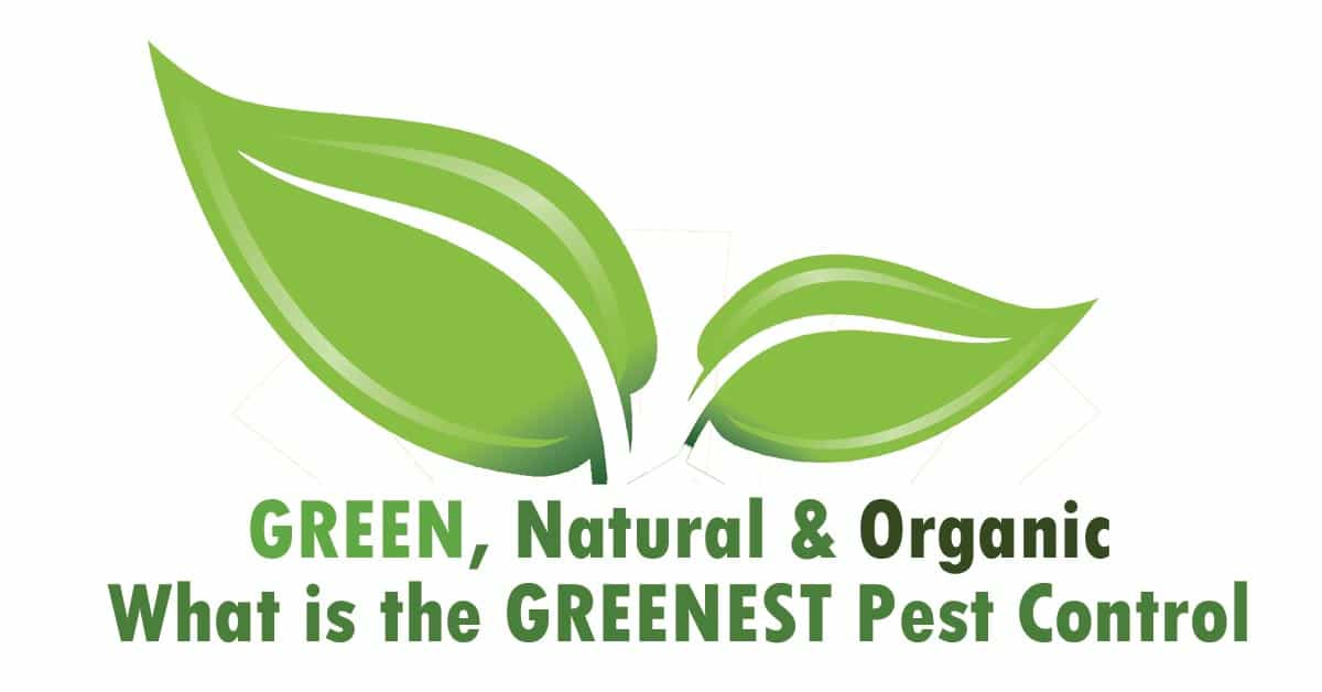 Natural Green or Organic which is the best pest control